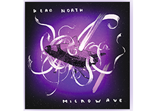 Head North & Microwave Split Album